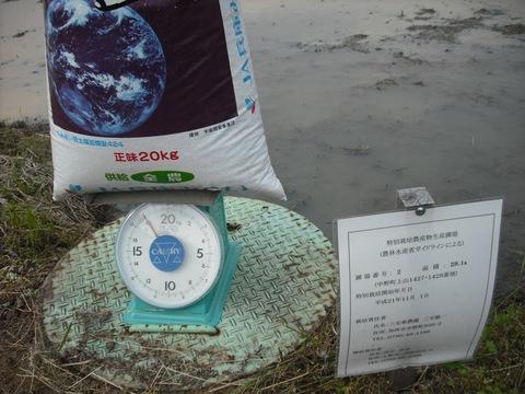 特別栽培圃場(№2)元肥施肥.JPG