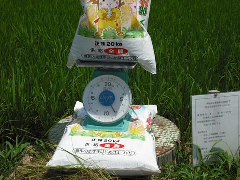 総合ミネラル施肥前の計量(25.7.19)JPG.JPG