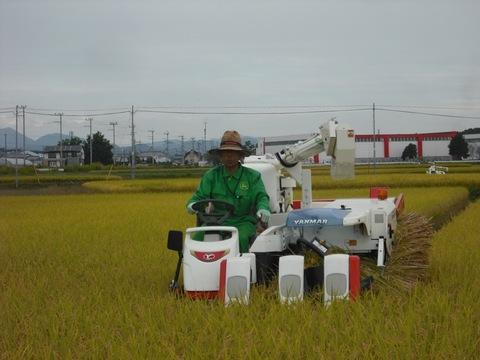 稲刈り(26.10.9).JPG