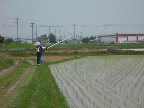 除草剤の散布(27.6.13)JPG.JPG