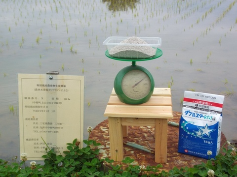 除草剤の散布時の計量(28.6.12)JPG.JPG