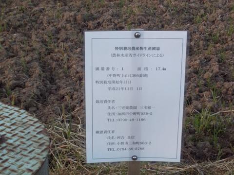 31年度特別栽培圃場標識(31.4.22)2495.JPG