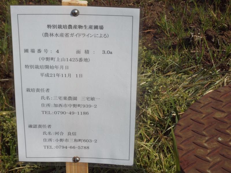 令和2年特別栽培圃場標識(2.4.15)DSCF3076.JPG