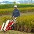 令和2年バインダーで稲刈り(2.10.7)3540.JPG